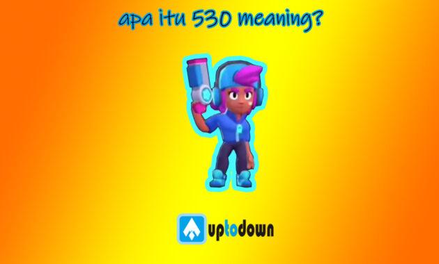 apa itu 530 meaning