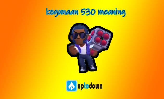 kegunaan 530 meaning